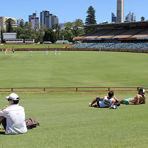 Fans soak up the sun on the grass banks